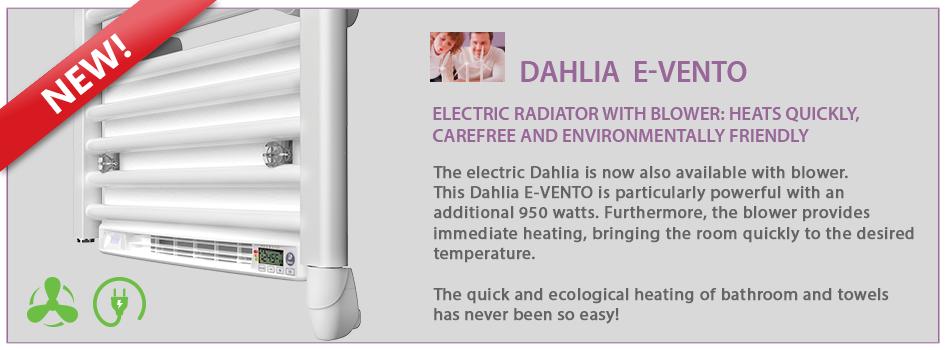 ELECTRIC-DAHLIA-E-VENTO-SLIDER-2